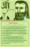 Pinterest UFO Contactee Billy Meier 024.jpg